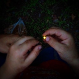 I didn't grow up with fireflies... I spent a surprising amount of time chasing them this summer