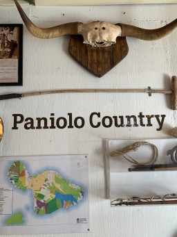 Makawao is cowboy country. No wonder I loved it.