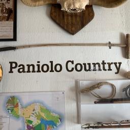 Makawao is cowboy country. No wonder I loved it.