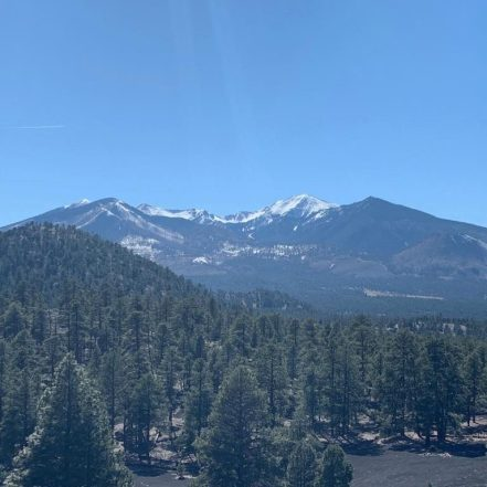 The San Francisco Peaks in Coconino National Forest